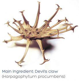 cellogie-joints-devils-claw