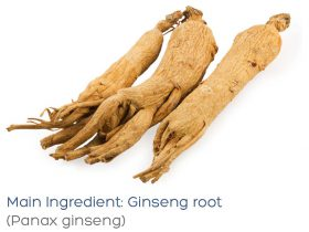 cellogie-recharge-ginseng-root